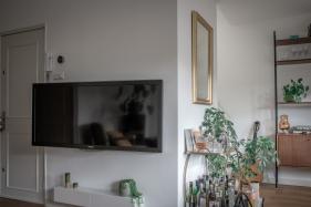 Livingroom tv Jan van Gallen_